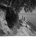 Fotothek df ps 0001463 Landschaften ^ Insellandschaften.jpg