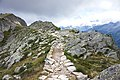 France - trail 8.jpg
