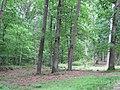 Fredericksburg Battlefield - panoramio.jpg