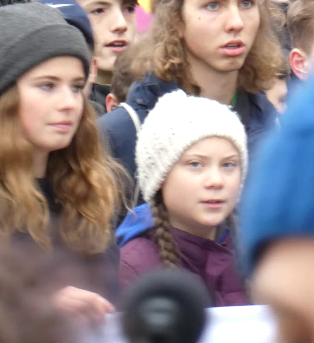 FridaysForFuture Hamburg (cropped 2).png