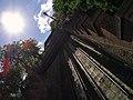 Funicular tracks - panoramio.jpg