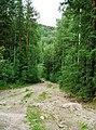 G. Miass, Chelyabinskaya oblast', Russia - panoramio (121).jpg