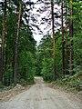 G. Miass, Chelyabinskaya oblast', Russia - panoramio (149).jpg