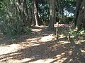GA Brunswick Hofwyl-Broadfield Plantation trail01.jpg