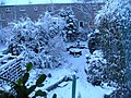 Garden in winter. - panoramio.jpg
