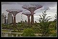Gardens by the Marina Bay-04 (8320376465).jpg