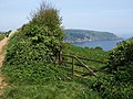 Gateway near Little Dartmouth - geograph.org.uk - 806717.jpg