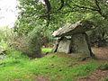 Gaulstown Dolmen IMG 4683.jpg