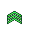 General Directorate of Public Security- Vice Sergeant.png
