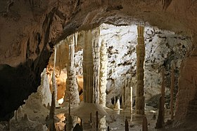 Image illustrative de l'article Grottes de Frasassi