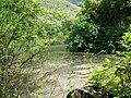 Giardino di Ninfa 3.jpg