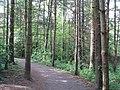 Glenlyon, Holywood (4) - geograph.org.uk - 811030.jpg
