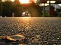 Good evening - panoramio.jpg