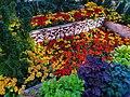 Gorgeous garden bed.jpg