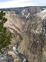 Grand canyon yellowstone.jpg
