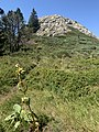 Grosse roche Chaudeyrolles n3.jpg