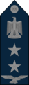 Group Captain - Egyptian Air Force rank.png