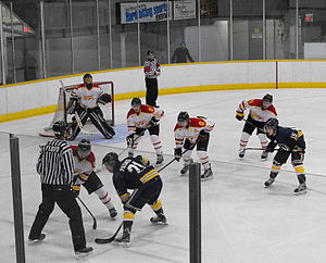 U Sports men's ice hockey - Guelph Gryphons and Windsor Lancers square-off during 2012-13 season.
