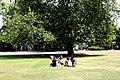 Haggerston, Stonebridge Gardens - geograph.org.uk - 1938442.jpg