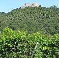 Hambacher Schloss - panoramio - Immanuel Giel (12).jpg