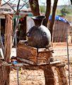 Hand Wash, Turmi, Ethiopia (15212861700).jpg