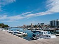 Harbour, Zadar (P1080710).jpg