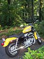 Harley-Davidson Sportster, yellow motorcycle.jpg