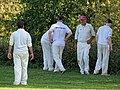 Hatfield Heath CC v. Netteswell CC on Hatfield Heath village green, Essex, England 15.jpg