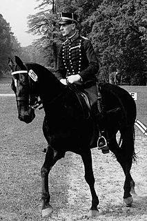 Henri Saint Cyr Swedish equestrian