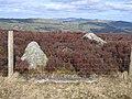 High Point and Parish Boundary on Llantysilio Mountain - geograph.org.uk - 358579.jpg