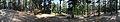 Hilltop - Naldehra 2014-05-08 1844-1856 Compress.JPG