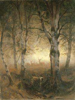 Fototapete Vlies Tapete Hirsche im Wald schwarz-weiß Aufnahme Nr 2003