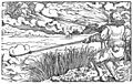 Illustrazione eolo.jpg