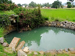 India - Yelagiri Hills Adventure Camp - 02 - swimming in the well (4030991953).jpg