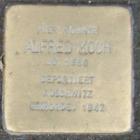 Ingelheim Alfred Koch.png
