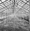 interieur, grote kas, overzicht oostvleugel - molenhoek - 20002598 - rce