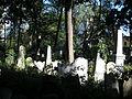 Israelitischer Friedhof Währing September 2006 028.jpg