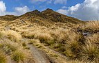 Isthmus Peak Trail, New Zealand 07.jpg