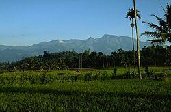 伊杨-阿尔加普拉火山