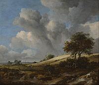 Jacob Isaacksz. van Ruisdael - A Cornfield with the Zuiderzee in the background - Google Art Project.jpg