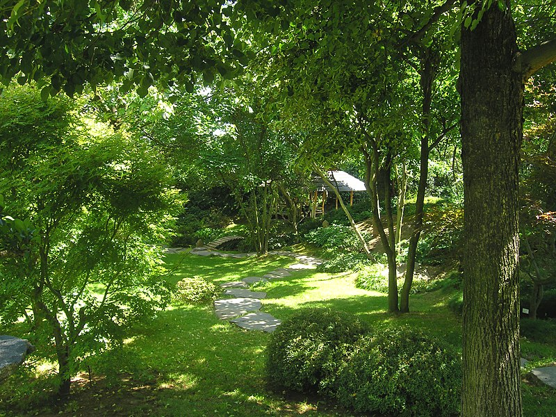 Ogród w leśnym stylu