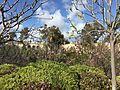 Japanese Friendship Garden (Balboa Park, San Diego) 13 2016-05-14.jpg