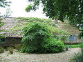 Jardin a la faulx 175.jpg
