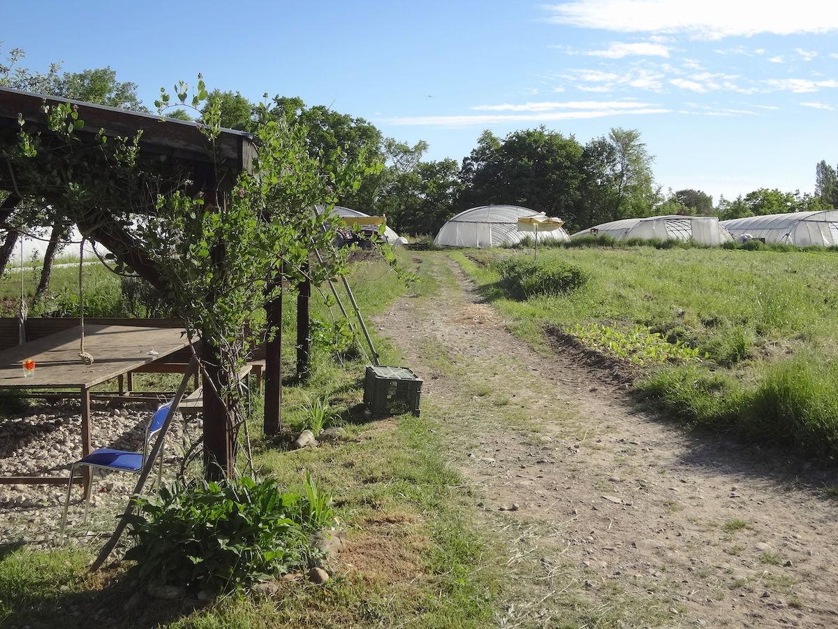Jardins de cocagne wikip dia for Les jardins de cocagne