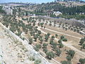 Jerusalem, Mount of olives 3863.JPG