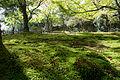 Jingoji Kyoto Kyoto33n4592.jpg