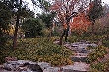 Jingshanpic3.jpg