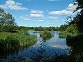 Joe's Pond.jpg