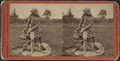 John Hoey's Garden, Long Branch, from Robert N. Dennis collection of stereoscopic views.png