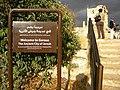 Jordan, Jerash.Present city. DSCN0657.jpg